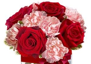 Bouquet composizione con rose rosse e garofani rosa