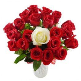 Mazzo di rose da 20 rose rosse e 1 bianca