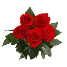 bouquet rose rosse da 5