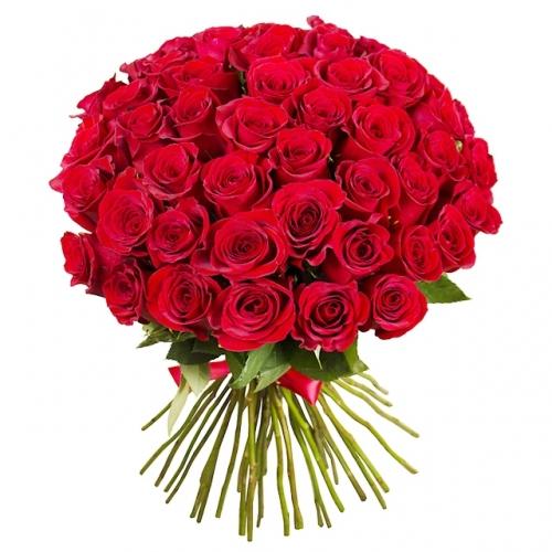 bouquet con 51 stupende rose rosse fiocco rosso e verde decorativo