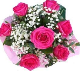 Bouquet con 7 rose fuxia con nebbiolina