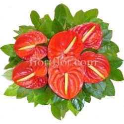 Boqueut con anthurium rossi