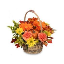 Cesto fiori freschi misti color arancio per composizione Halloween