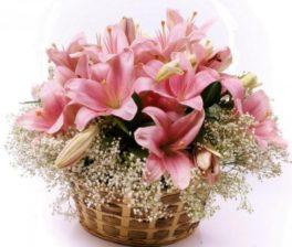 Cesto di fiori freschi composizione con lilium rosa
