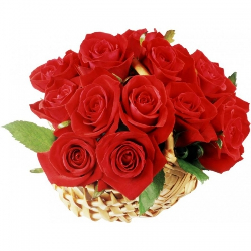 Cesto con rose rosse