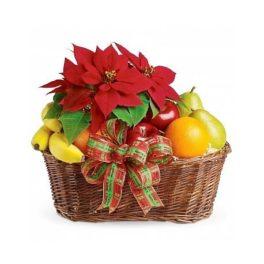 Cesto per Natale con frutta fresca mista di stagione e poinsettia rossa