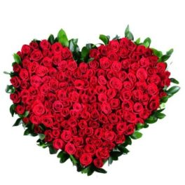 Mazzo di 500 rose rosse a forma di cuore
