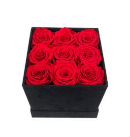 Box 9 Rose Rosse Stabilizzate