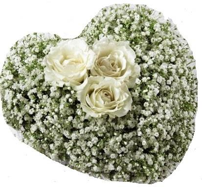 Composizione a forma di cuore con 3 rose bianche al centro e gypsophila