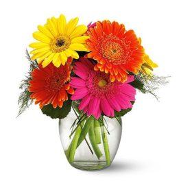 Bouquet Gerbere miste colorate in vaso di vetro