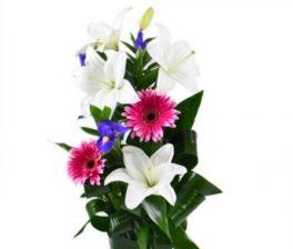 Mazzo con gerbere rosa, lilium bianchi e fiori blu