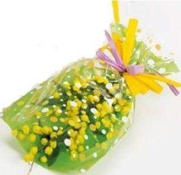 Mazzo di Mimosa con fiocco giallo
