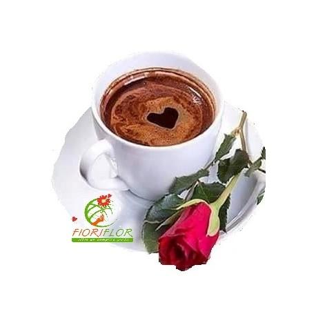rosa rossa con caffè in tazza