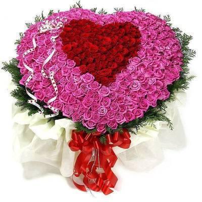 composizione a forma di cuore di 200 rose rosse e rosa