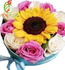 Scatola regalo Composizione con 1 GiraSole e Rose