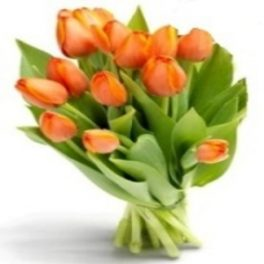 Bouquet di Tulipani Arancio
