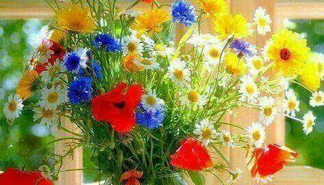 fiorista online