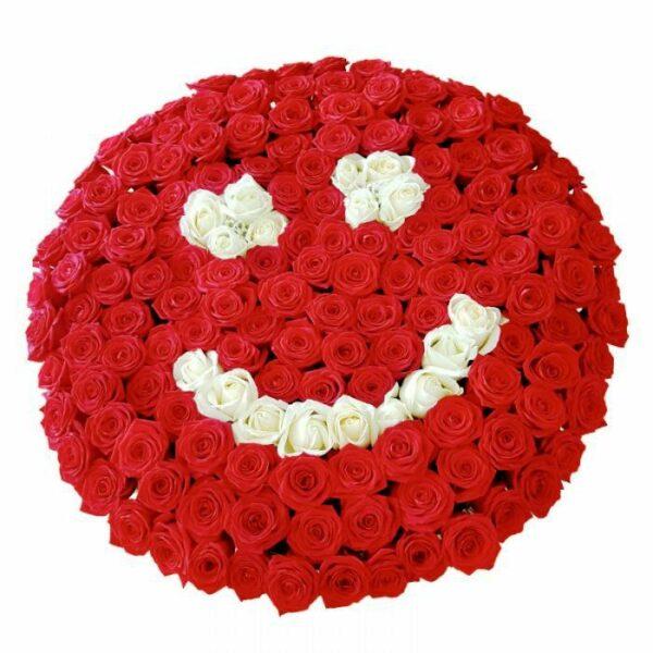 101 rose rosse e bianche